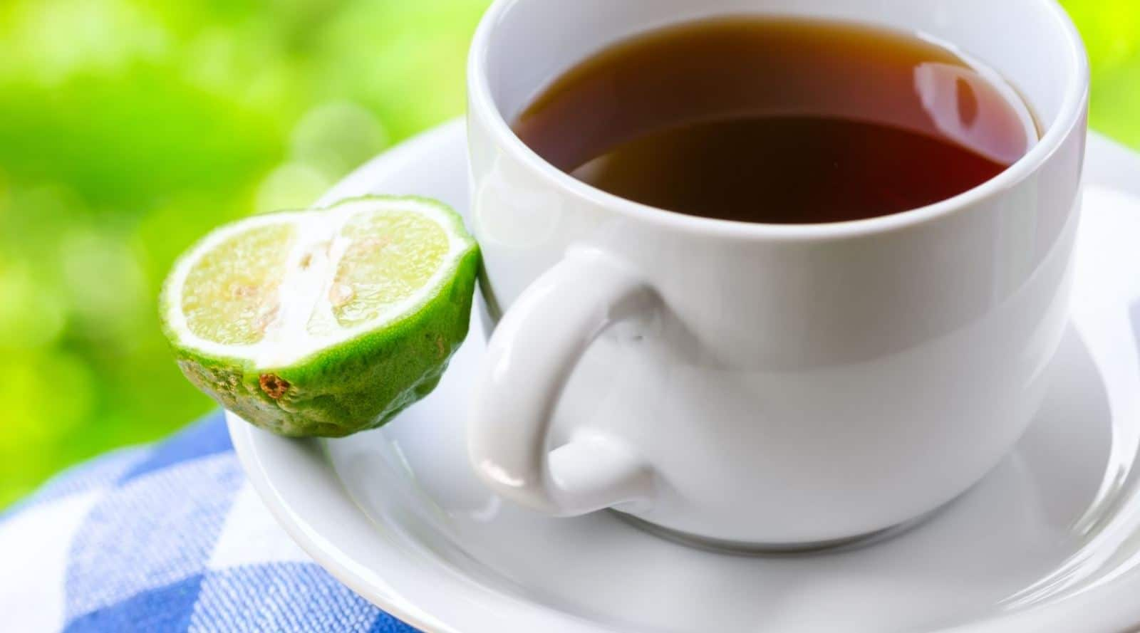 earl grey vs english breakfast tea: knowing the difference