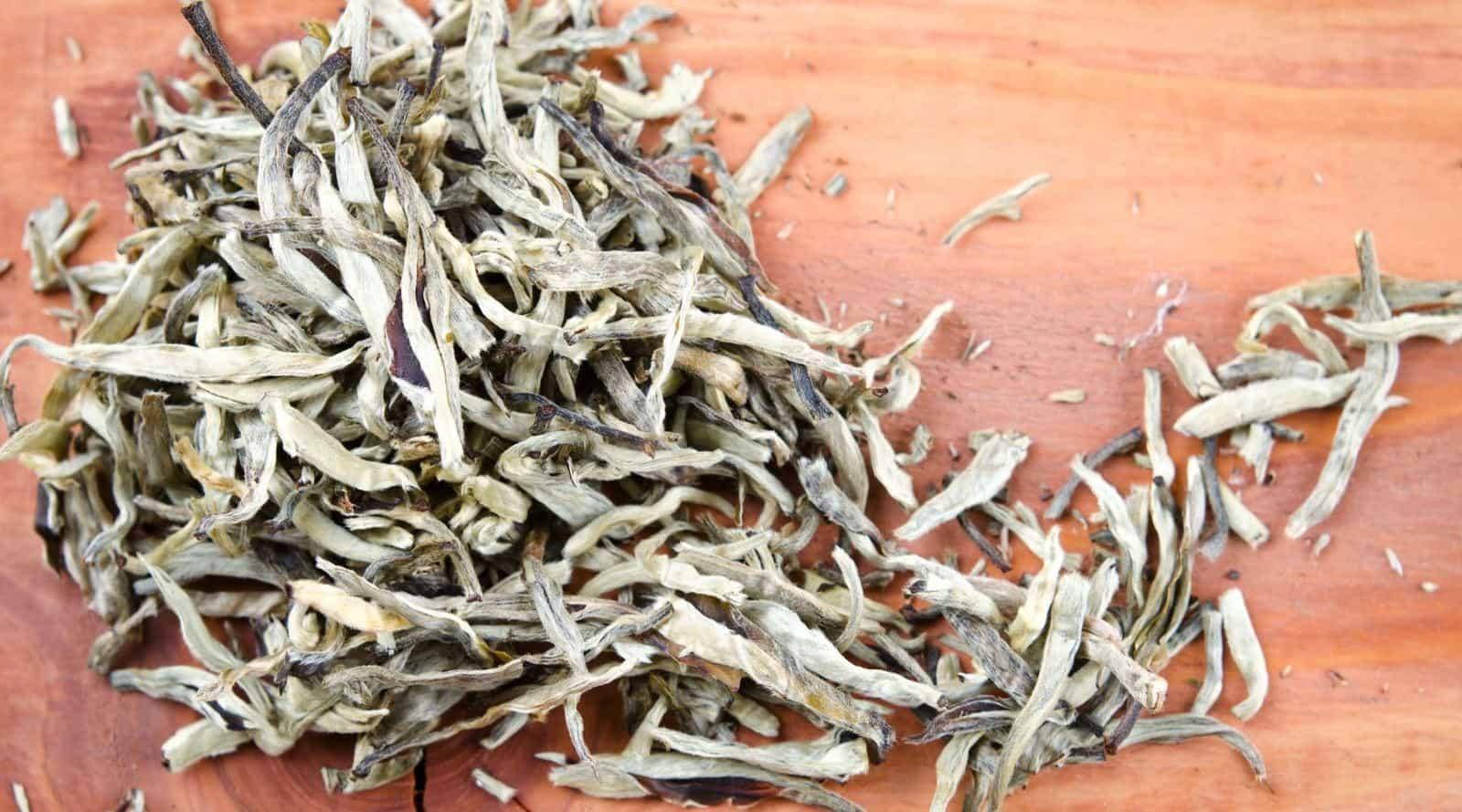 a look at the interesting world of silver needle tea